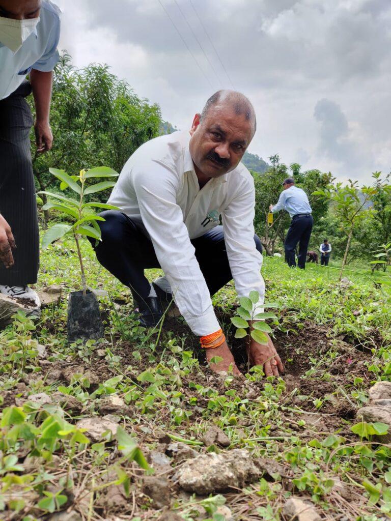 Plantation on  Harela festival 2021